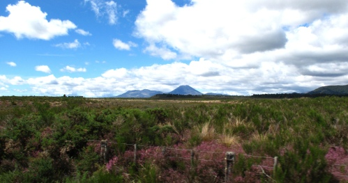 across-national-park-to-mt-ruapehu-from-the-train