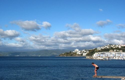 jumping-into-wellington-harbor