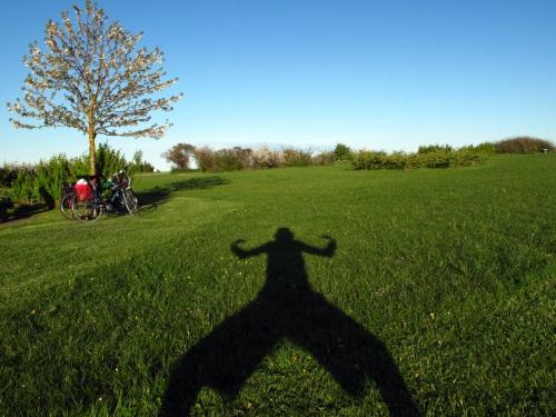 pep shadow